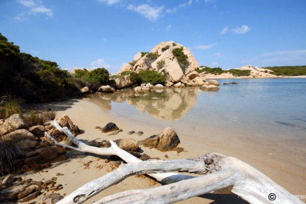 discover-la-maddalena-national-park